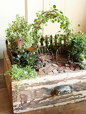 How to Create a Magical Miniature Garden