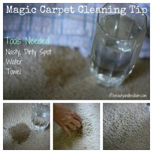 Magic Carpet Cleaner