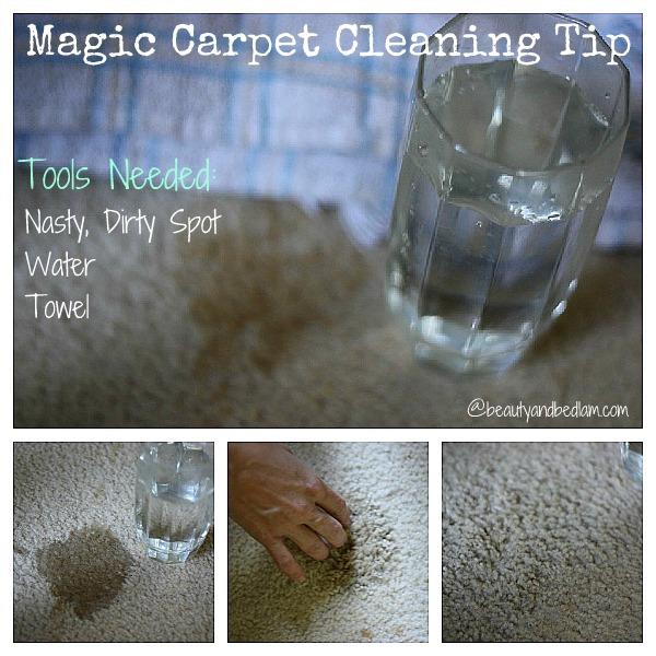 Magic Carpet Cleaner